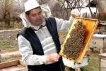 Пасечники ВКО подарили олимпийской сборной РК 50 комплектов пчелопродукции