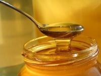 На фестивале меда в Усть-Каменогорске пчеловоды представят десятки тонн сладкой продукции
