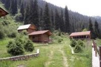 В Иле-Алатауском парке по делу об убийстве 12 человек задержан егерь
