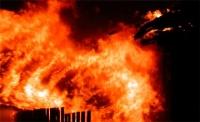 В Зайсане сгорела конюшня с 29 лошадьми