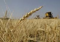 В Восточно-Казахстанской области  презентована  новая отраслевая программа «Агробизнес-2020»