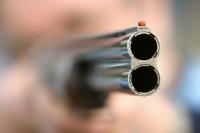 В Семее на глазах шестилетней девочки собаколовы убили ее домашнего питомца