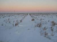 В ВКО танкисты спасли замерзающих в степи фермеров