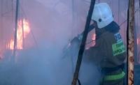 В Усть-Каменогорске при пожаре погиб мужчина и его домашние животные