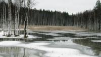 Холодная погода продлится до середины апреля в Казахстане