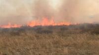 Степной пожар потушен в ВКО
