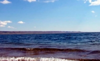 На озере Маркаколь задержаны браконьеры, выловившие более 50 кг ускуча