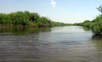 ВКО: в реке Бобровка утонул 75-летний мужчина