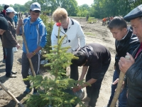 (+Фото) В новом парке на острове Полковничий высади 1700 саженцев