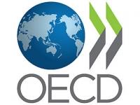 Представители международной организации ОЭСР изучали проблемы лесоперерабатывающей отрасли ВКО